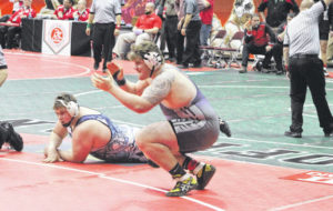 Bulldogs place three at state tournament