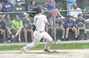 Dogs win sectional baseball title