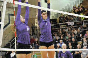 Bulldog spikers built for strong season
